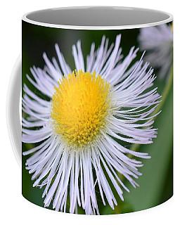 Summer Flower Coffee Mug