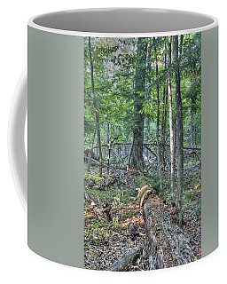 Summer In A Canadian Forest Coffee Mug