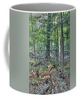 Summer In A Canadian Forest Coffee Mug