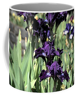 Coffee Mug featuring the photograph Summer Iris by Tikvah's Hope