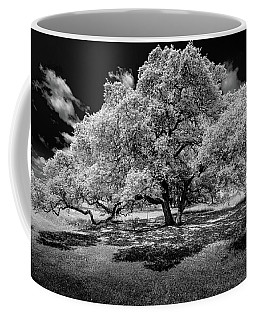 A Summer's Night Coffee Mug