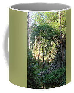 Summer On Bitten Path Coffee Mug