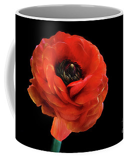 Coffee Mug featuring the photograph Summer Orange by Darren Fisher