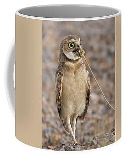 Summer Snack Coffee Mug