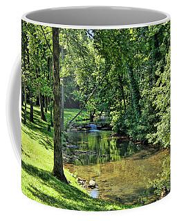 Coffee Mug featuring the photograph Summer Stream by Cricket Hackmann