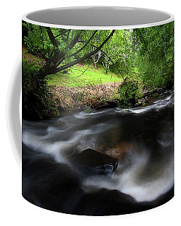 Summer Stream Coffee Mug by Tim Nichols