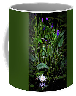 Coffee Mug featuring the photograph Summer Swamp 2017 by Bill Wakeley