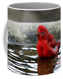 Summer Tanager In Bird Bath Coffee Mug