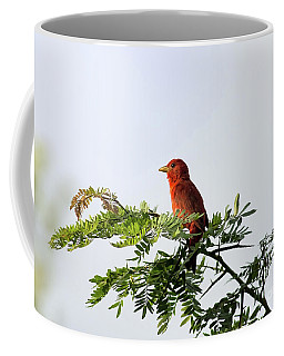 Coffee Mug featuring the photograph Summer Tanager In Mesquite Scrub by Robert Frederick