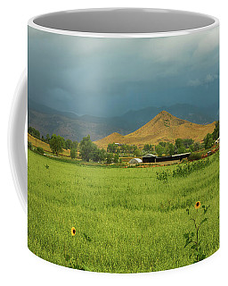 Coffee Mug featuring the photograph Summer View Of  Hay Stack Mountain by James BO Insogna