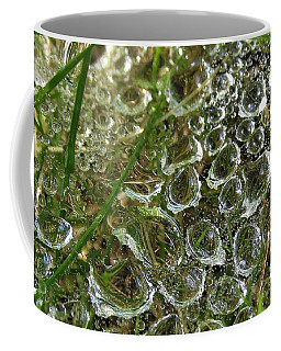 Summer's Freeze Coffee Mug