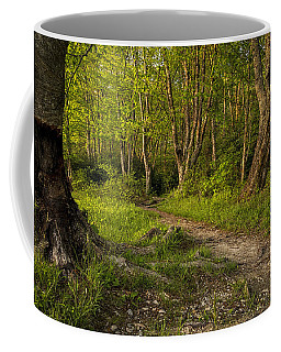 Price Lake Trail - Blue Ridge Parkway Coffee Mug