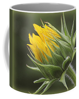 Summer's Promise - Sunflower Coffee Mug