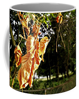 Coffee Mug featuring the photograph Summer's Toll by Robert Knight