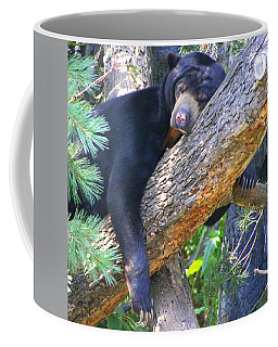 Sun  Bear - Afternoon Nap Coffee Mug by Laurel Talabere
