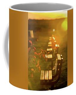 Sun Drenched Bench Coffee Mug