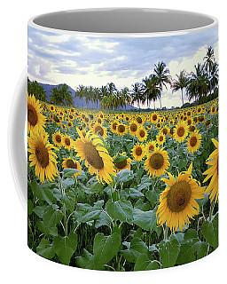 Sun Fields Coffee Mug