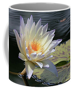 Sun Kissed Allure Coffee Mug by Yvonne Wright