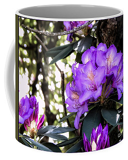 Sun Kissed Coffee Mug by Brenda Bostic