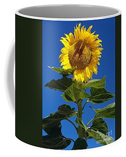 Sun Love Coffee Mug