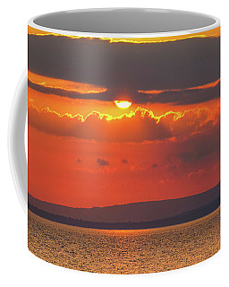 Coffee Mug featuring the photograph Sun by Rachel Cohen