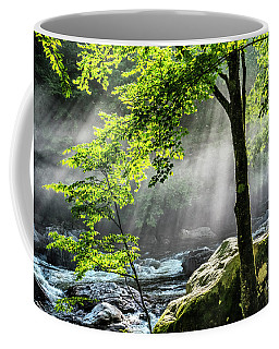 Coffee Mug featuring the photograph Sun Rays On Williams River  by Thomas R Fletcher