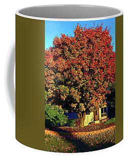 Sun-shining Autumn Coffee Mug