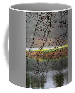Coffee Mug featuring the photograph Sun Shower by Bill Wakeley