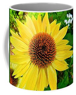 Sun Soaked Echinacea Coffee Mug