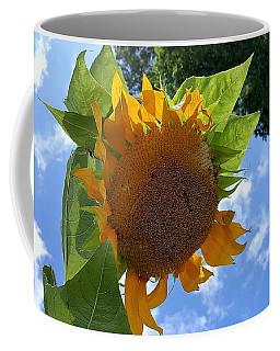 Coffee Mug featuring the photograph Sun Sun Flower 1 by Rob Hans