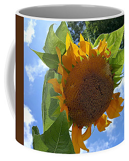 Coffee Mug featuring the photograph Sun Sun Flower by Rob Hans