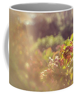 Sunbathe Morning Coffee Mug