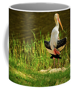 Sunbathing Delta-winged Painted Stork  Coffee Mug