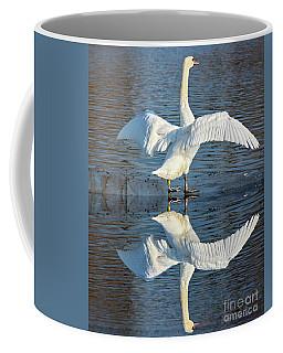 Coffee Mug featuring the photograph Sunbathing Swans by Odon Czintos