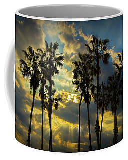 Coffee Mug featuring the photograph Sunbeams And Palm Trees By Cabrillo Beach by Randall Nyhof