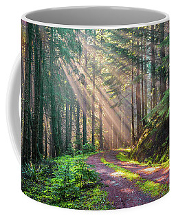 Sunbeams In Trees Coffee Mug