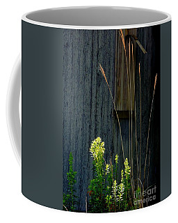 Sunbeams Coffee Mug
