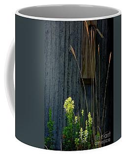 Sunbeams Coffee Mug