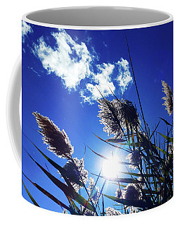 Sunburst Reeds Coffee Mug