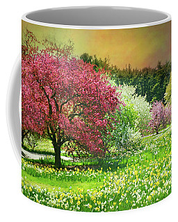 Coffee Mug featuring the photograph Sunday My Day by Diana Angstadt
