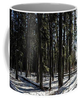 Sundial Forest Coffee Mug