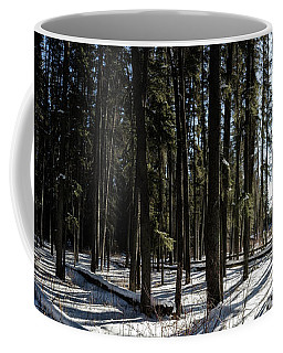 Sundial Forest Coffee Mug