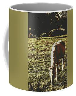 Sundown Horse Meadow Coffee Mug
