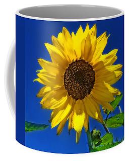Maize 'n Blue Coffee Mug
