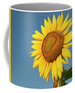 Sunflower And Blue Sky Coffee Mug