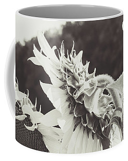 Coffee Mug featuring the photograph Sunflower Black And White by Andrea Anderegg