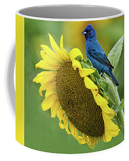 Sunflower Blue Coffee Mug