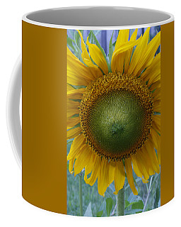 Sunflower Coffee Mug by Catherine Alfidi