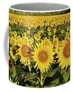 Sunflower Faces Coffee Mug by Ann Bridges