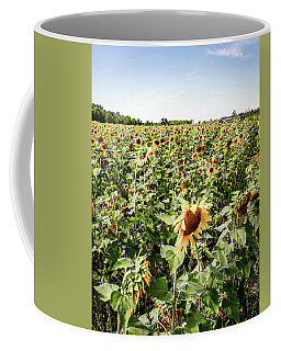 Coffee Mug featuring the photograph Sunflower Field by Alexey Stiop